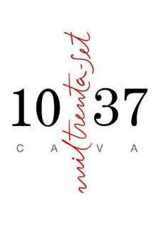 logo-cava-1037