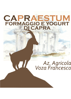 logo Voza Francesco